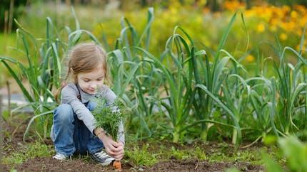 Les conseils de nos experts pour cultiver son potager au naturel