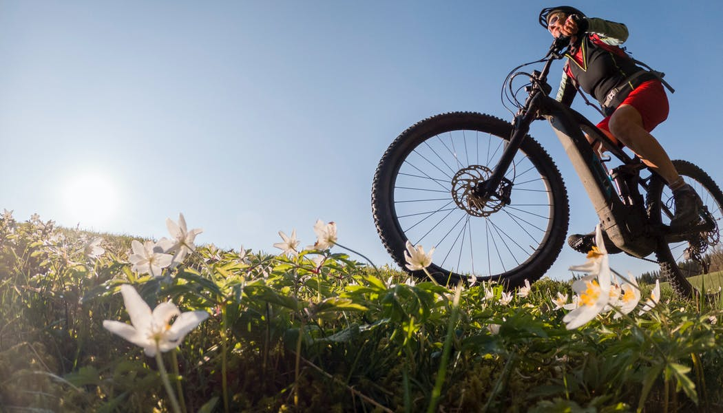 Comment choisir son vélo à assistance électrique?