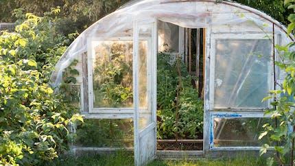 Comment installer une serre dans son jardin?