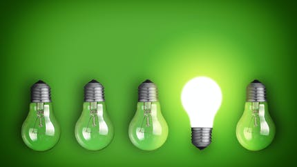Gaz et électricité renouvelables : Selectra et WWF France lancent une offre d'achat groupé