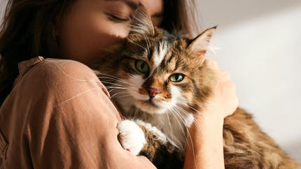 Animaleries, fourrure, centres équestres… Les mesures de la proposition de loi contre la maltraitance animale